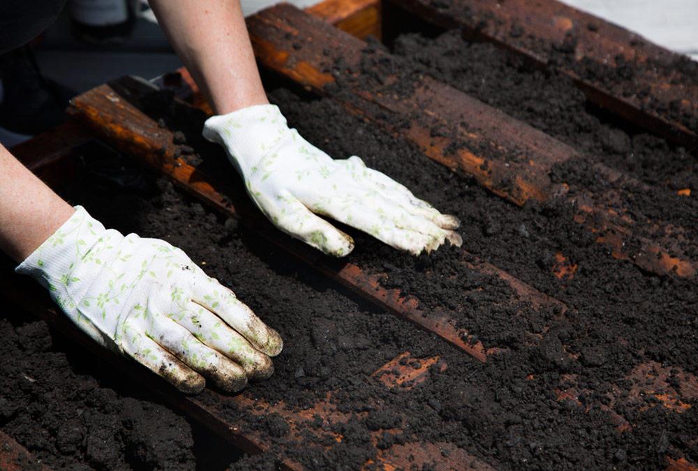 Pallet & Potting Soil - LiveAbode