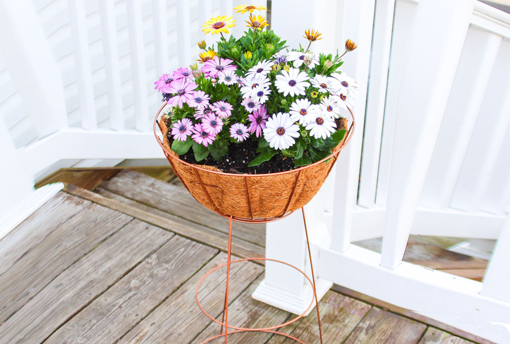 diy plant stand made from tomato cage